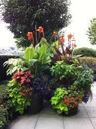 stunning container garden ideas for landscape tropical design