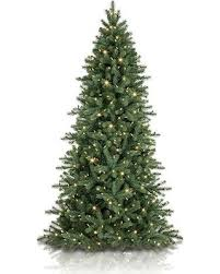 bargains 34 7 5 balsam hill woodland spruce artificial