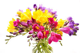 new ideas pictures of flower bouquets with flowers bouquet
