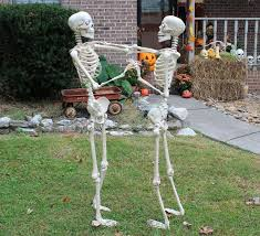 215 best halloween skeletons images on pinterest halloween