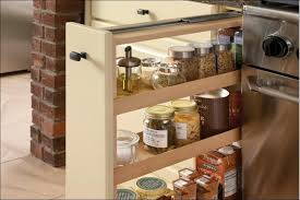 Spice Rack Pantry Door Kitchen Wonderful Back Of Door Spice Rack Spice Containers