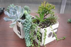 the 31 cutest and most creative diy planters