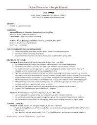 Resume Sample View by Psychologist Resume Haadyaooverbayresort Com
