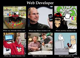 Web Developer Meme - image 253332 what people think i do what i really do know
