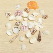 get cheap diy seashells aliexpress alibaba