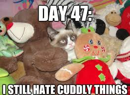 Tard The Grumpy Cat Meme - irti funny picture 2824 tags tard grumpy cat still hates