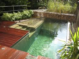 natural swimming pools uk images pixelmari com