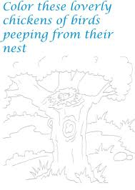 nest in jungle coloring page printable