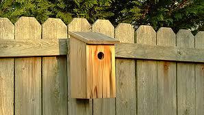 basic birdhouse