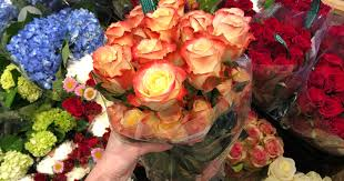 how much does a dozen roses cost two dozen whole foods market roses only 19 99 for prime