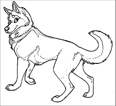 brilliance husky coloring page wecoloringpage 17 wecoloringpage