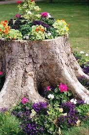 How To Start A Flower Garden In Your Backyard Best 25 Tree Stumps Ideas On Pinterest Tree Stump Furniture