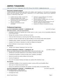 Insurance Experience Resume 2000 Word Essay On Accountability In The Army Professional