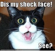 Shocked Face Meme - dis may shock face see icanhascheezeurger meme on me me