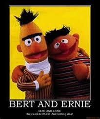 Bert And Ernie Meme - bert and ernie should come out seriously