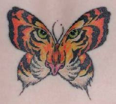 butterfly tiger tattooshunt com