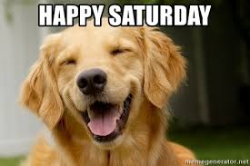 Saturday Meme - happy saturday dumb happy dog meme generator