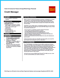 Online Resume Submit by Cool Credit Analyst Resume Example From Professional