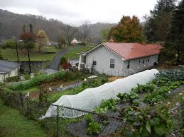 sustainability a ton of produce in a year from 1 10th of an acre