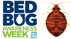 Can Bed Bugs Live In Water Bed Bugs What Every Camp Needs To Know American Camp Association
