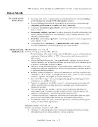 Executive Summary Example For Resume by Sales Executive Summary Resume Example Musidone Com