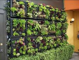 gorgeous vertical indoor garden 122 indoor vertical garden plans