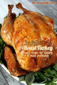 step by step guide to the best roast turkey