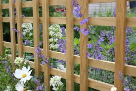 latest news story jacksons fencing new tartan trellis design