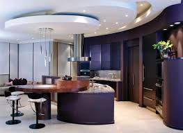 Kitchen Cabinet Interior Organizers by Outstanding Modern Style Kitchen Cabinets With Dark Purple Kitchen