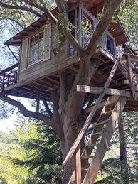Simple Backyard Tree Houses by 27 Best Trees House Images On Pinterest Treehouse Ideas
