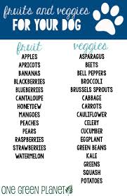 best 25 healthy fruits and vegetables ideas on pinterest fruit