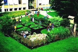 Ideas For School Gardens School Landscape Ideas Beautiful Design For Hillside Landscaping