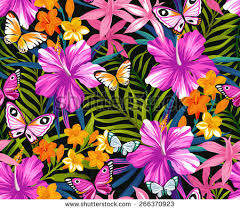 butterflies flowers pattern graphic background stock vector