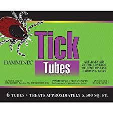 Ticks In Backyard Best 25 Wood Tick Ideas On Pinterest Ticks In House Wood Games