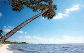 Vero Beach Florida Map by Deer Island A Sportsman U0027s Paradise Off Cedar Key Florida