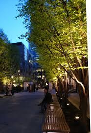 Inground Linear Lighting Google Search Outdoor Pinterest - Backyard lighting design