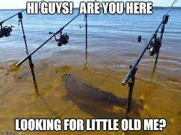 Funny Fish Memes - let s go fishing funny fishing pictures pinterest fish