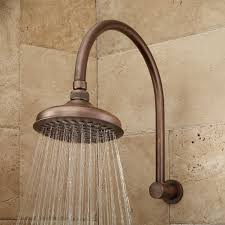 Household Brass Cleaner Brass Modern Shower Head Signature Hardware