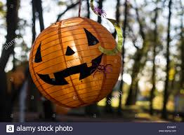 halloween paper lanterns halloween paper lantern lit by sun hanging on tree in forest stock