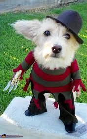 Freddy Krueger Halloween Costume Kids Freddy Krueger Costume Freddy Krueger Freddy Krueger Costume