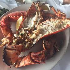 Best Restaurants In Los Angeles La U0027s Best Fine Dining Restaurants Best Restaurants For Lobster In Los Angeles Cbs Los Angeles