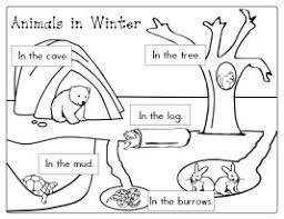 43 best hibernation images on pinterest preschool winter winter