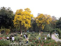 zakir hussain rose garden wikipedia