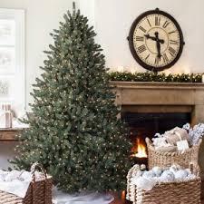 balsam trees december 2017