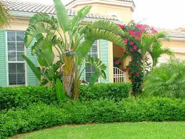 Florida Mediterranean Style Homes - open house old orchid mediterranean style courtyard home vero