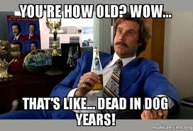 Old Meme - you re how old wow that s like dead in dog years ron