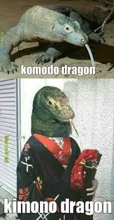 the best reptiles memes memedroid