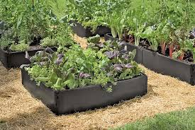 grow bed recycled plastic above ground garden beds gardeners com