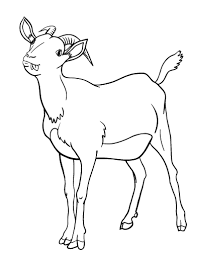 free coloring pages goats printable goat coloring page free pdf download at http