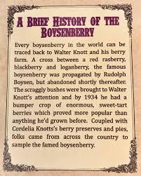 Knotts Berry Farm Map Knott U0027s Boysenberry 2017 Festival Ladybug Blog
